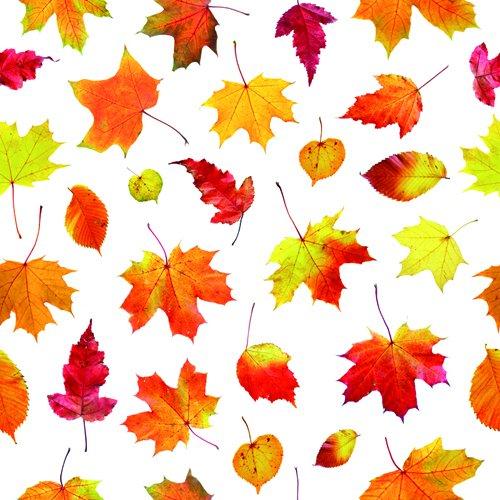 40 hochwertige Servietten / Motivservietten / Dekorservietten mit Herbst - Motiven 33x33 cm,3-lagig,1/4 Falz (JE15-026 (Blatt Kürbis)