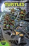 Teenage Mutant Ninja Turtles: New Animated Adventures Vol. 3