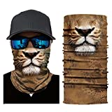 Feitb Löwe Grizzly Kätzchen Muster Maske Radfahren Halstuch Motorrad Kopftuch Halswärmer Gesichtsmaske Ski Balaclava Stirnband Kopfschutz Nackenschutz Face Shields (A)