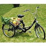 ZNL FANO-TEC Dreirad Für Erwachsene Lastenfahrrad Erwachsenendreirad Seniorenrad 24
