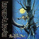Iron Maiden: Fear of The Dark (2015 Remastered Version) [Vinyl LP] (Vinyl)