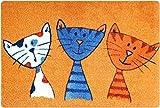 deco-mat Fußmatte Katze – Fussmatte Innen Rutschfest und Waschbar – Schmutzfangmatte/Fussabtreter / Fussabstreifer 40x60 cm