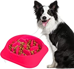 Pets Empire Slow Feeder Bowl, Pets Slow Eating Bowl, Interactive Feeder, Anti Choking Bowl, Bloat Stop Dog Bowl, Feeding Bowl for Dogs/Cats - Pink