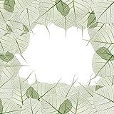 DeinDesign Sony Playstation 3 Folie Skin Sticker aus Vinyl-Folie Aufkleber Blätter Laub Pflanze