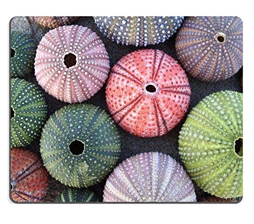 Luxlady Gaming Mousepad foto ID: 19057483 Varietà di umidità, motivo ricci di mare, colore: sabbia