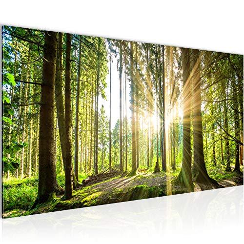 Bilder Wald Landschaft Wandbild 100 x 40 cm Vlies - Leinwand Bild XXL Format Wandbilder Wohnzimmer Wohnung Deko Kunstdrucke Grün 1 Teilig - Made IN Germany - Fertig zum Aufhängen 503812b -