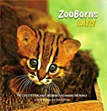 Zoo Borns: Cats The Newest and Cutest Exotic Cats from Zoos around the World! price comparison at Flipkart, Amazon, Crossword, Uread, Bookadda, Landmark, Homeshop18