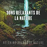 Sons Relaxants de la Nature (Relaxing Sounds of Nature)