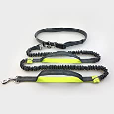 Vismiintrend Dual-Handle Reflective and Adjustable Bungee Dog Leash