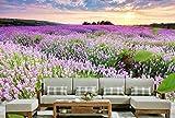 Yosot 3D Tapete Benutzerdefinierte Wandbild 3D-Zimmer Tapete Lavendel Garten Sonnenuntergang Malerei Fototapete-250cmx175cm
