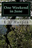 One Weekend in June: A Novel