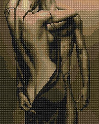 Diamond Vollbedeckung mit Holzrahmen Painting Set Bild 40 x 50 Diamant Malerei Stickerei Handarbeit Basteln Mosaik Steine Blumen Korb Haus am Bach (GJ624)
