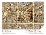 Graz Design 761061_20x25_60 Fliesenaufkleber Muscheln/Seestern für Kacheln | Bad-Fliesen mit Fliesenbildern überkleben (Fliesenmaß: 20x25cm (BxH)//Bild: 90x60cm (BxH))
