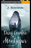 Dans l'ombre de Montségur: un conte cathare