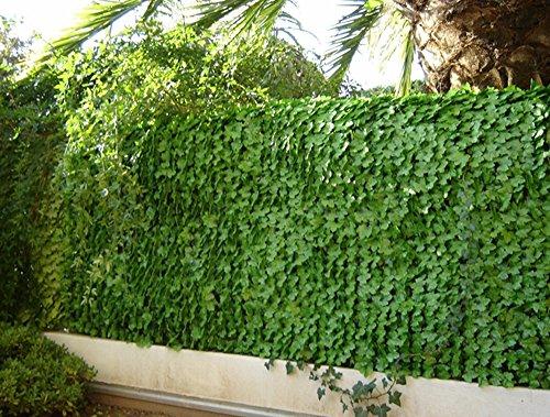 Haie artificielle feuilles de Lierres coloris vert tendre, 1,00m x 3m -PEGANE-