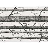 SOLEDI Vliesstoff Stoff Birke Wald Baum mit Tapete Wall Paper Muster Schwarz und Weiß, 57,4Quadratmeter/Rolle