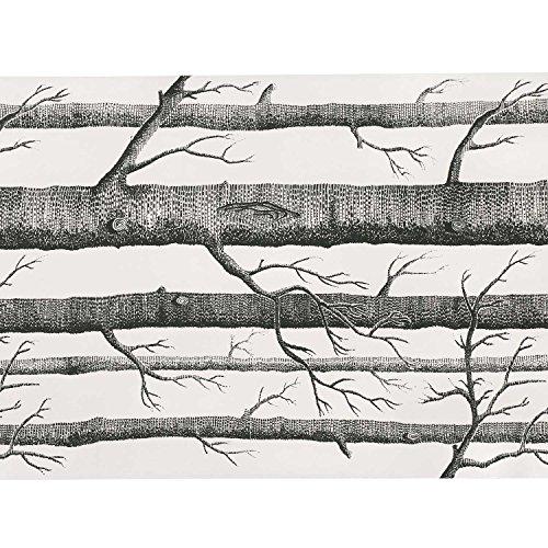 soledi-papel-pintado-tela-no-tejido-abedul-bosque-de-arbol-con-textura-wall-paper-negro-y-blanco-574