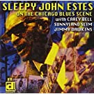 On the Chicago Blues Scene (Electric Sleep) by SLEEPY JOHN ESTES (2013-05-03)