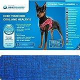 kühlendes Geschirr für Hunde - Kühlgeschirr für Hunde - M - Pacific Blue