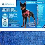 Aqua Coolkeeper–Bequemes Kühlgeschirr für Hunde