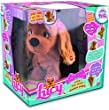 Club Petz - Lucy The Dog
