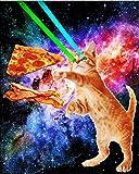 YISUMEI Decke 125x200 cm Kuscheldecken Sanft Flanell Weich Fleecedecke Bettüberwurf Weltraum Hunger Flying Cat Pizza