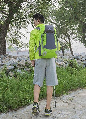 ruifu Rucksack Leicht Wasserdicht verstaubarer Outdoor Wandern Nylon Tasche für Frau & Mann Grün