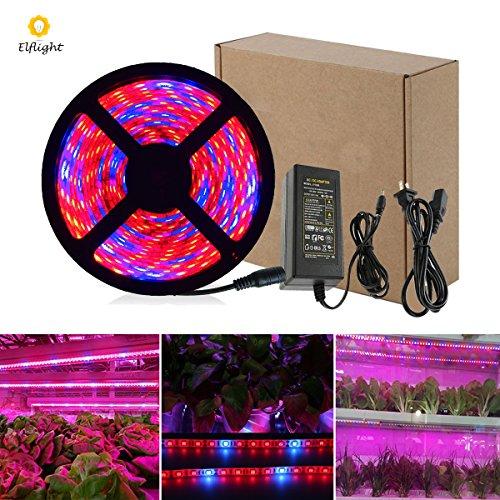 Elflight LED-Pflanze wachsen Streifen-Licht (Energien-Adapter eingeschlossen), SMD5050 wasserdichtes volles Spektrum rotes Blau 4: 1 wachsendes Lampen-Aquarium-Gewächshaus-hydroponische Hose-Garten-Blumen (5M/16.4ft)
