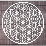 Wand-Deko Blume des Lebens ø 44 cm aus Edelstahl mit Kristallen | Wand-Schmuck Lebensblume Wand-Dekoration Spirituelles Symbol | Esoterik Geschenke günstig kaufen