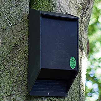 Nestbox Co Eco Bat Box with Cavity Roosting Chamber Nestbox Co Eco Bat Box with Cavity Roosting Chamber 619IPykmHML