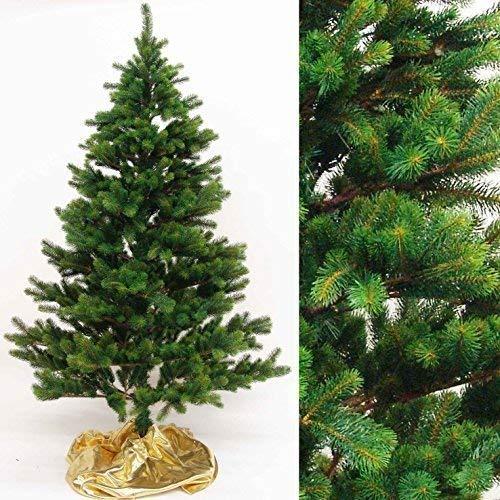 árbol de Navidad abeto Lujo Natural 120cm, pvc-tips (zweigchen ), con soporte...
