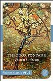 Unterm Birnbaum: Erzählung (Fischer Klassik) von Theodor Fontane