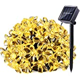 Qedertek Fairy Blossom Flower Solar String Lights, 21ft 50 LED Christmas Decorative Lighting For Indoor And Outdoor, Home, Lawn, Garden, Wedding, Patio, Party And Holiday Decorations (Warm White)