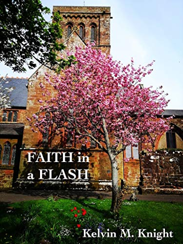 Image result for faith in a flash kelvin m knight