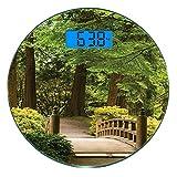 Bilancia digitale di precisione tondo Ponte di legno giapponese su uno stagno in giardino Calma in ombra di alberi Serenità in natura Misurazioni accurate del peso della bilancia pesapersone in vetro