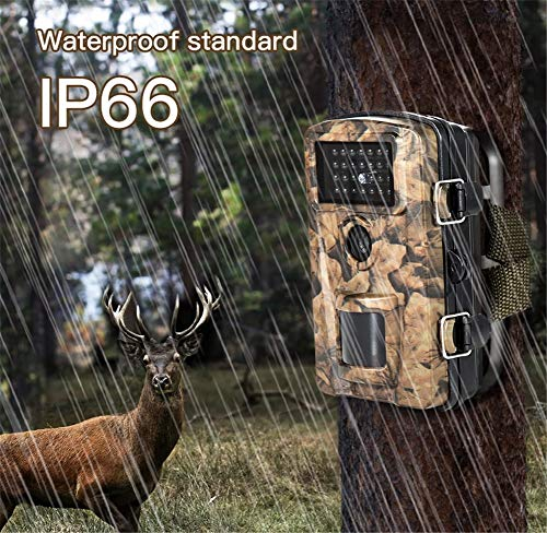 WYMYY DL Wildkamera Fotofalle Jagdkamera Trail Wildlife-Kamera-Spiel-Kameras 2 '' LCD-Display 12MP Digital Scout Guard Live-Jagdkamera Game Cameras Jagdkamera Digital Scout Video