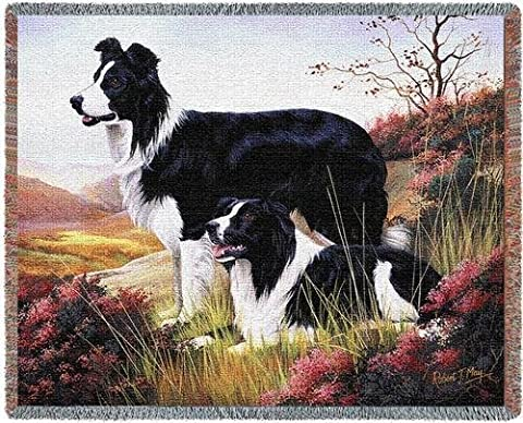 Border Collie Dog Design Blanket by Pure Country