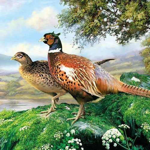 Ambiente Servietten Lunch / Party / ca. 33x33cm Pheasant - Fasan