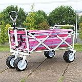 Multi-function trolley Hand-LKW-Kind-Einkaufsreise-Laufkatze/Vier Runden Van/Strand-Fischen-Gepäckwagen/Last 68 Kilogramm (Farbe : #1)