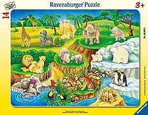Ravensburger 06052 - Puzzle con Marco (8-17 Piezas), diseño de Zoo