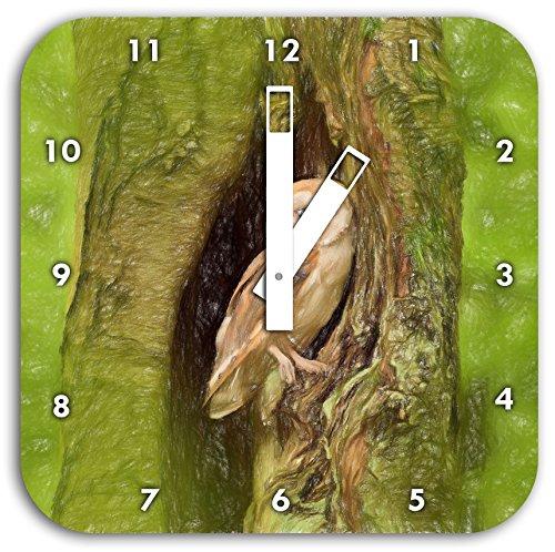 Schleiereule in der Baumhöhle Kunst Buntstift Effekt, Wanduhr Durchmesser 28cm mit schwarzen eckigen Zeigern und Ziffernblatt, Dekoartikel, Designuhr, Aluverbund sehr schön für...