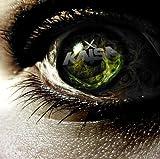 Songtexte von Kaisa - Dorn im Auge