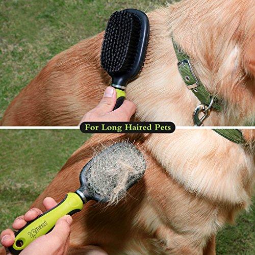 Zoom IMG-1 doppia spazzola per cani 2