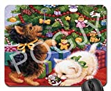 POGJY Gaming Mauspad 9.25 x 7.75 Inches, Mousepad, Verbessert Präzision und Geschwindigkeit, Gummiunterseite für Stabilen Halt auf Glatten Oberflächen, Rutschfest, Strapazierfähig Schwarz - Lemuren Bär image 460