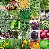 Portal Cool Tipo 9 Confezione da 30 Pezzi: Vari Semi di Piante Semi di Frutta Semi di Fiori Semi di ortaggi Piante di Erbe Eh7E