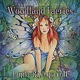 Llewellyn's 2016 Woodland Faeries Calendar by Linda Ravenscroft (2015-07-08)