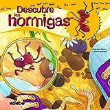 Descubre el mundo de las hormigas (Libros de conocimientos)