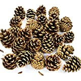 50 x AUSTRIACA PINE CONES CHRISTMAS XMAS CRAFT DECORATION TREE WREATH