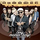 Sing Meinen Song by Various Artists (2013-08-03)