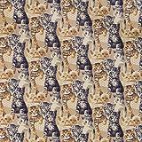 B&T Textilia Gobelinstoff Stoff Dekostoff Meterware Katzen 140 cm